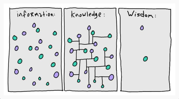Information vs wisdom